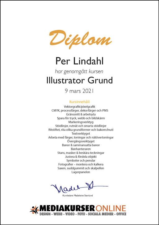 Diplom Illustrator