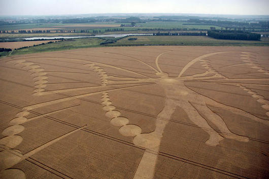 Butterfly-Crop-Circle-Netherlands-2009