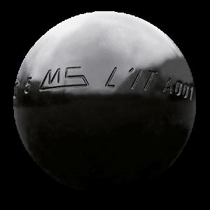 ms lit