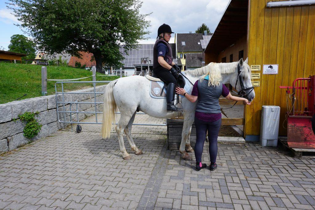 Aufsteigen aufs Pferd