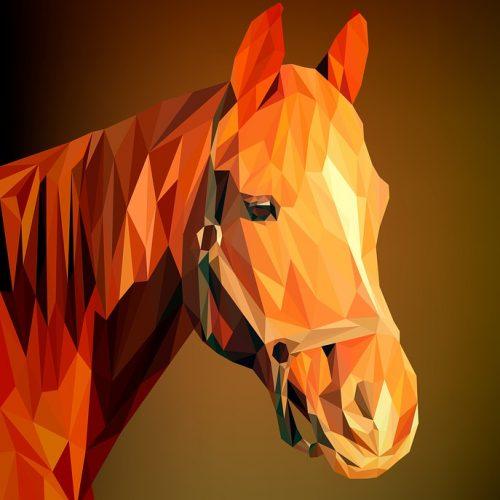pferdeblog