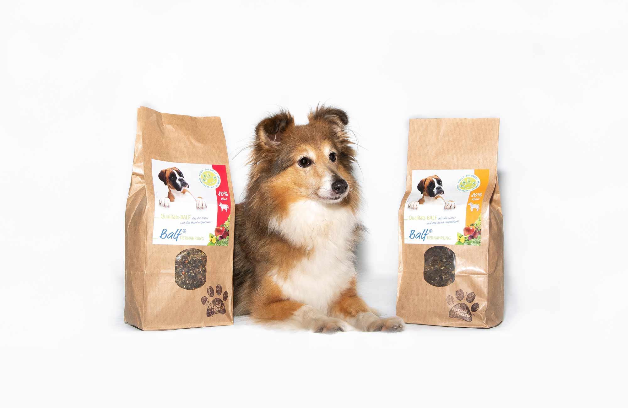 entzückendes Hundemädchen liegt erwartend zwischen zwei BALF-Produkten von PfotenImBiss