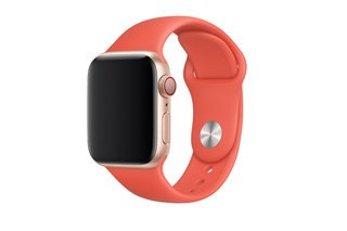 Which Apple Watch Should You Choose image 14