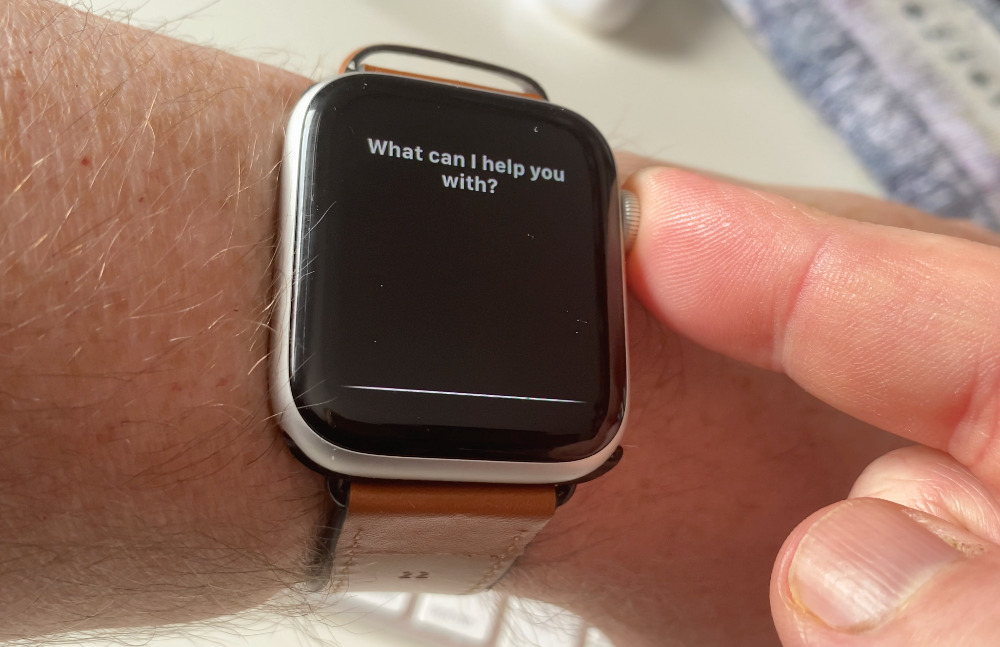Press and hold the Digital Crown to call up Siri without using the magic words