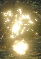 Monster Hunter Rise Endemic Life