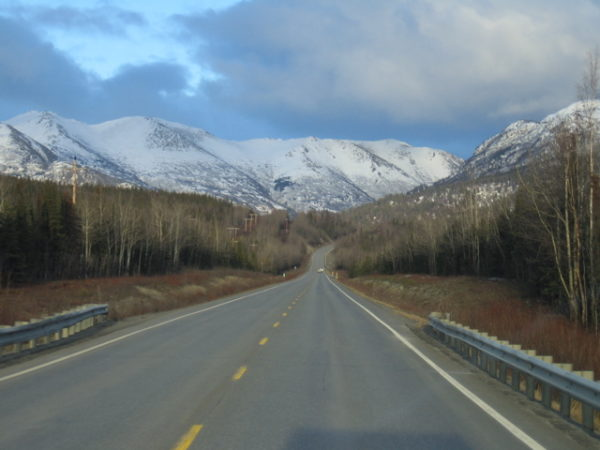 A stretch of highway next to spruce forest