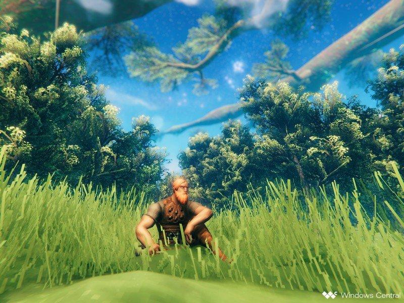 Valheim Sitting In Grass