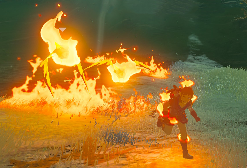 Fire Keese The Legend of Zelda: Breath of the Wild