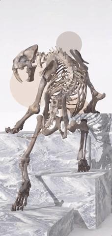 Prehistoric Creatures Return to Life via New iPhone AR App from Celebrity Historian David Attenborough