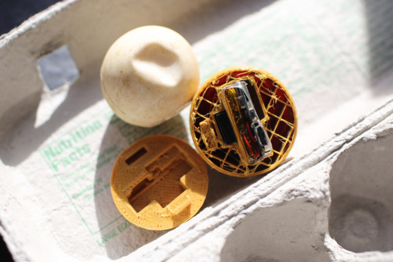 Featured image shows one of the research team's 3D printed turtle eggs. Photo via Paso Pacifico.