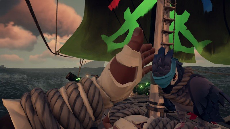 Sea Of Thieves Parrots