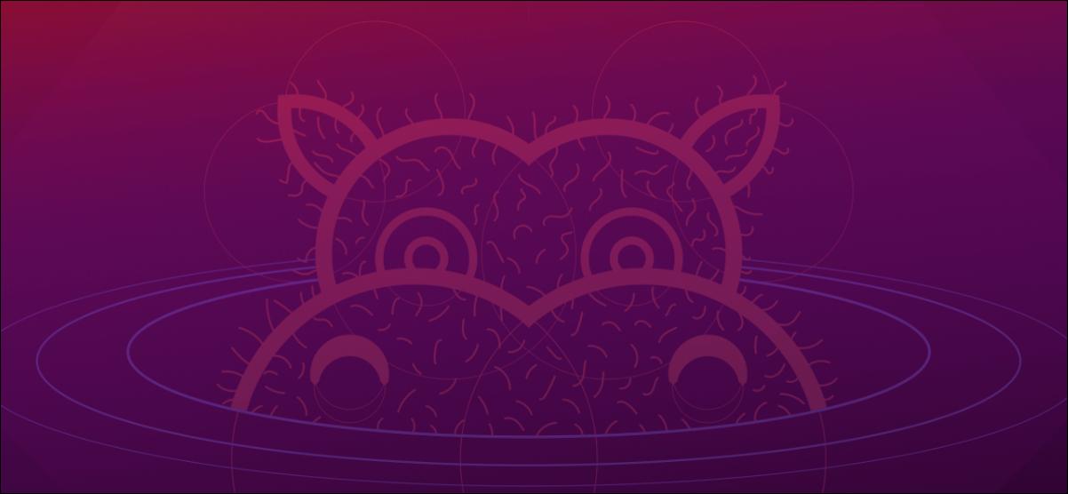 Hirsute Hippo