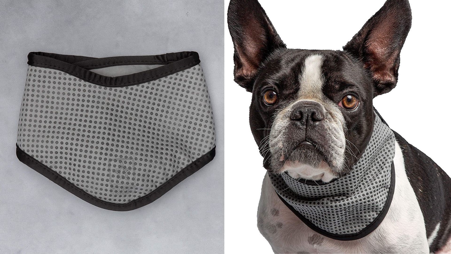 A gray bandana and a dog wears a gray bandana.