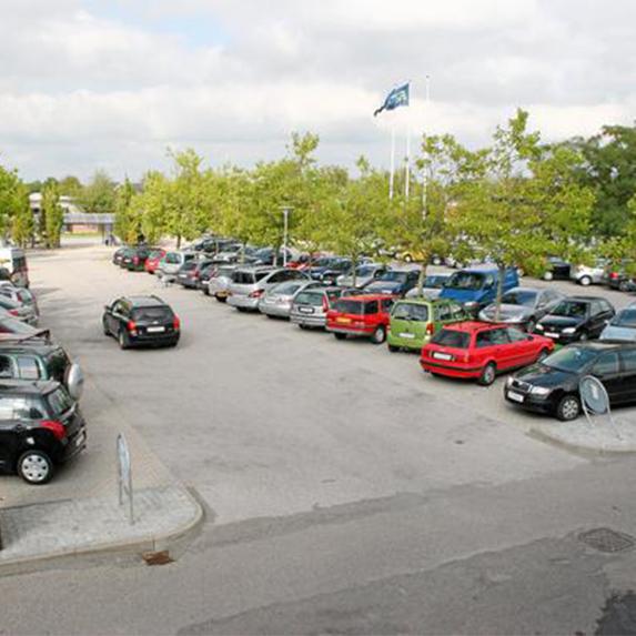 Roskilde showcase photocat size 573x573