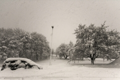 Winther_nordland_photoview
