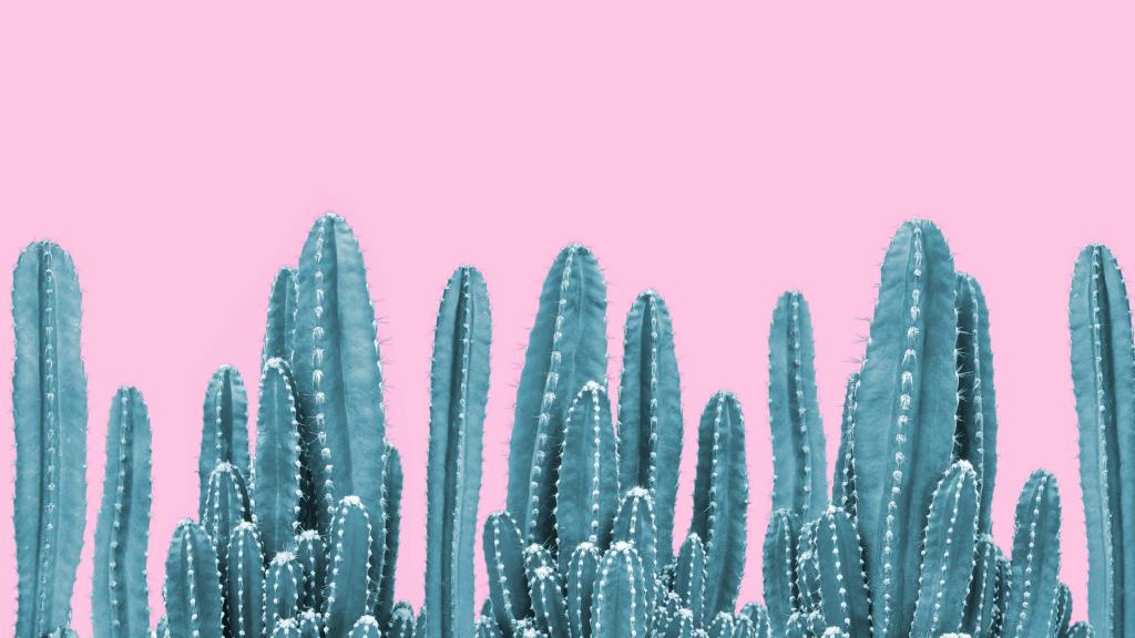 Mentala-hinder-kaktus