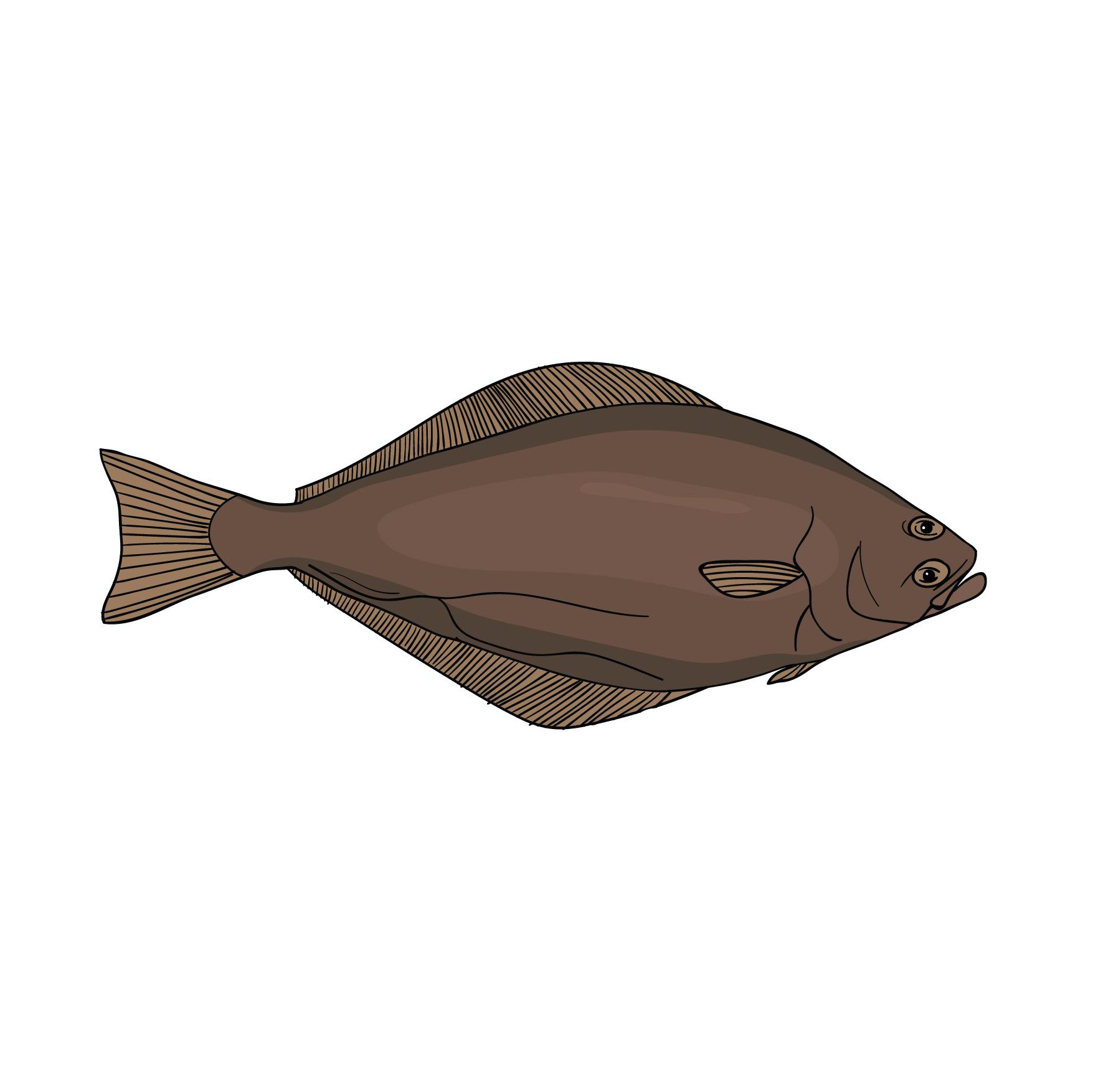Hellefisk