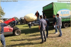 Pompoenfeest Wildert Weging-116-BorderMaker