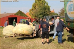 Pompoenfeest Wildert Weging-119-BorderMaker