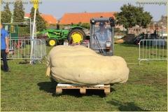 Pompoenfeest Wildert Weging-324-BorderMaker