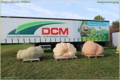 Pompoenfeest Wildert Weging-336-BorderMaker