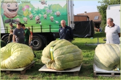Pompoenfeest Wildert Weging-410-BorderMaker