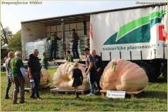 Pompoenfeest Wildert Weging-474-BorderMaker