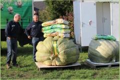 Pompoenfeest Wildert Weging-481-BorderMaker