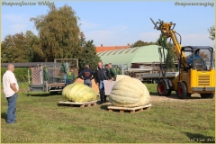 Pompoenfeest Wildert Weging-90-BorderMaker