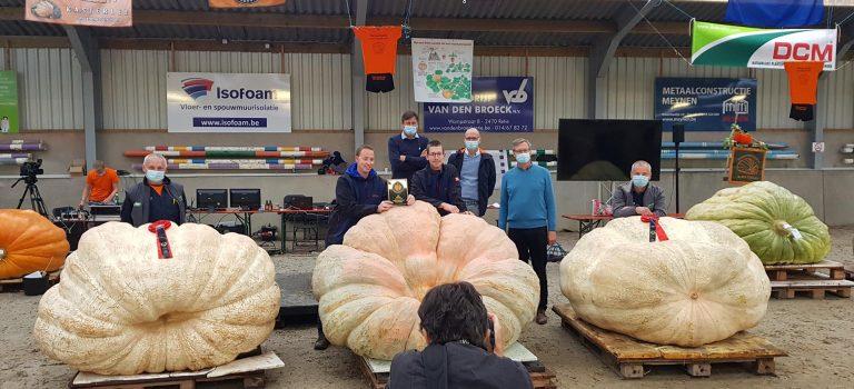 GPC Pumpkin weigh-off Belgium 2020