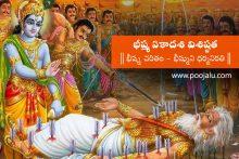 Bhishma Ekadasi Archives Pandit Poojalu Services