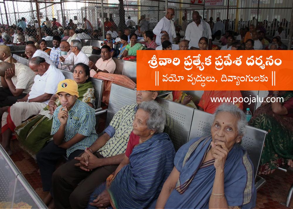tirumala-special-darshan-for-senior-citizens-phc-on-jan-9-29