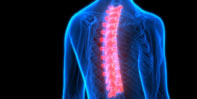 Spinal Physiotherapy & Rehabilitation Porthcawl