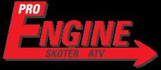 Logo, ProEngine Funäsdalen