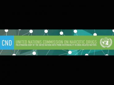 63rd UN Commission