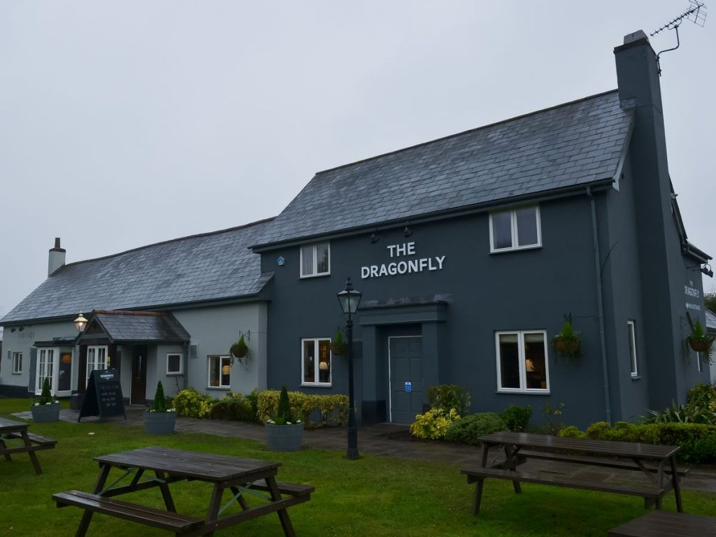 The Dragonfly in Newport