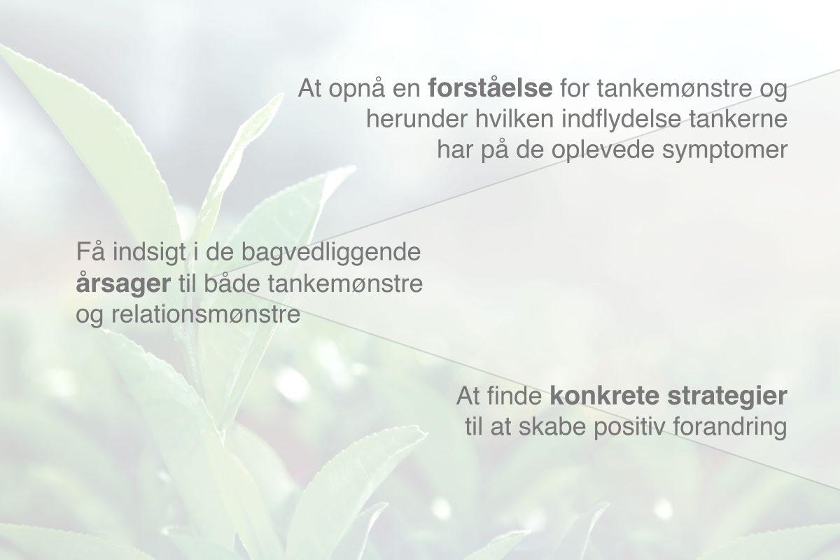 Forståelse for terapiforløb hos psykolog Anne Bräuner i Skanderborg