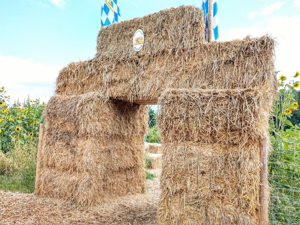 Das Maislabyrinth ist ein tolles Ausflugsziel für Familien. In wenigen Stunden erkundet man so ein völlig fremdes Gebiet und hat eine Menge Spaß dabei.