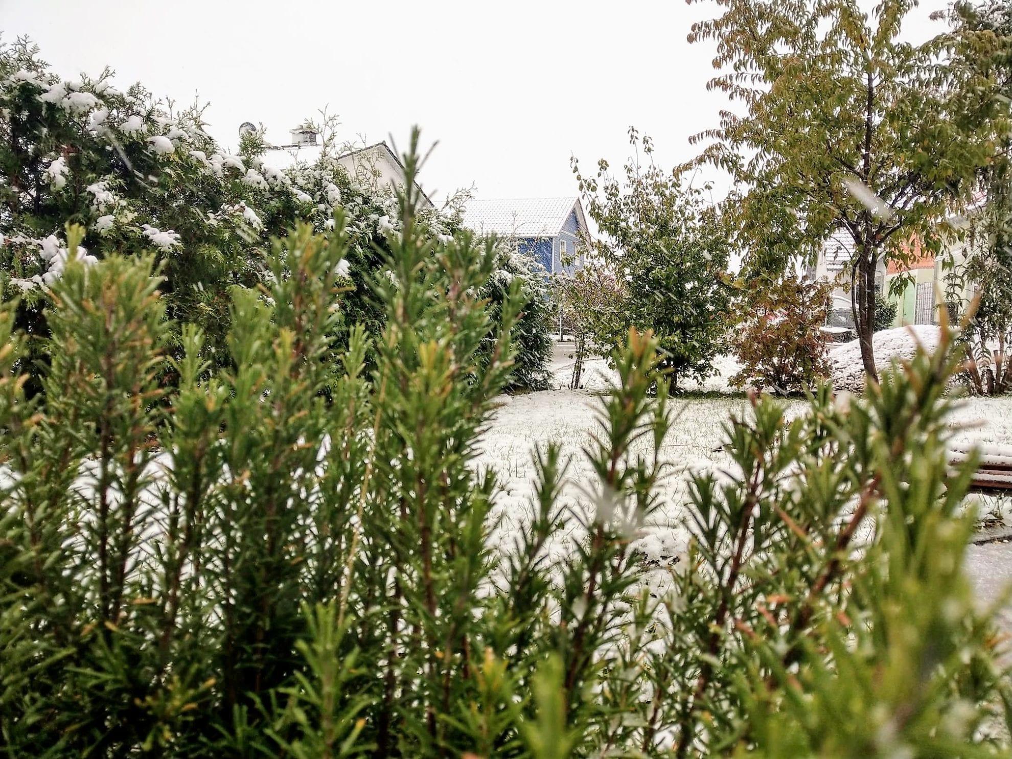 WIB am 28.10.18 mit dem ersten Schnee in Bayern