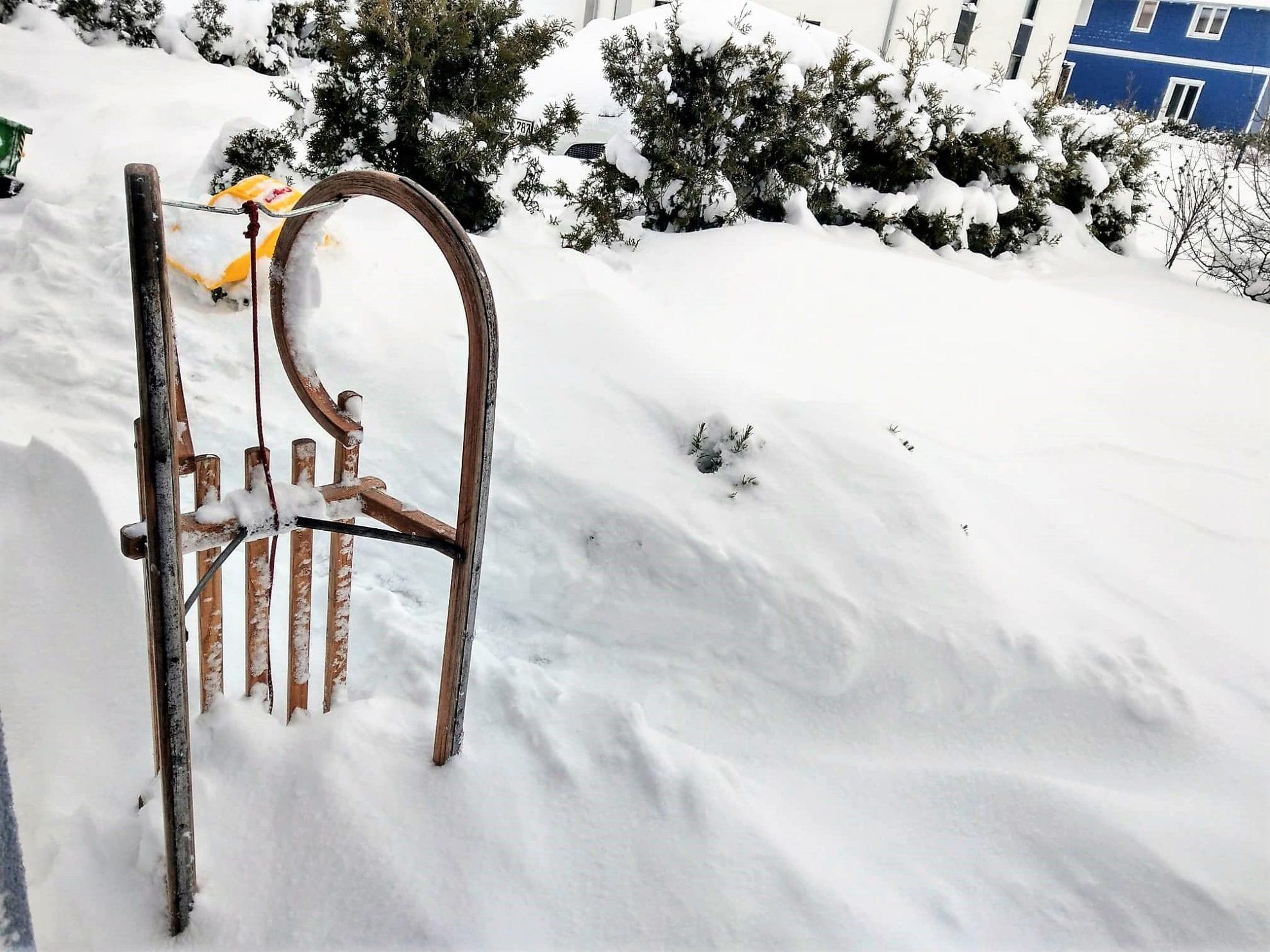 12 von 12 im Januar 2019: Schnee, überall Schnee im Großfamilienblog Puddingklecks
