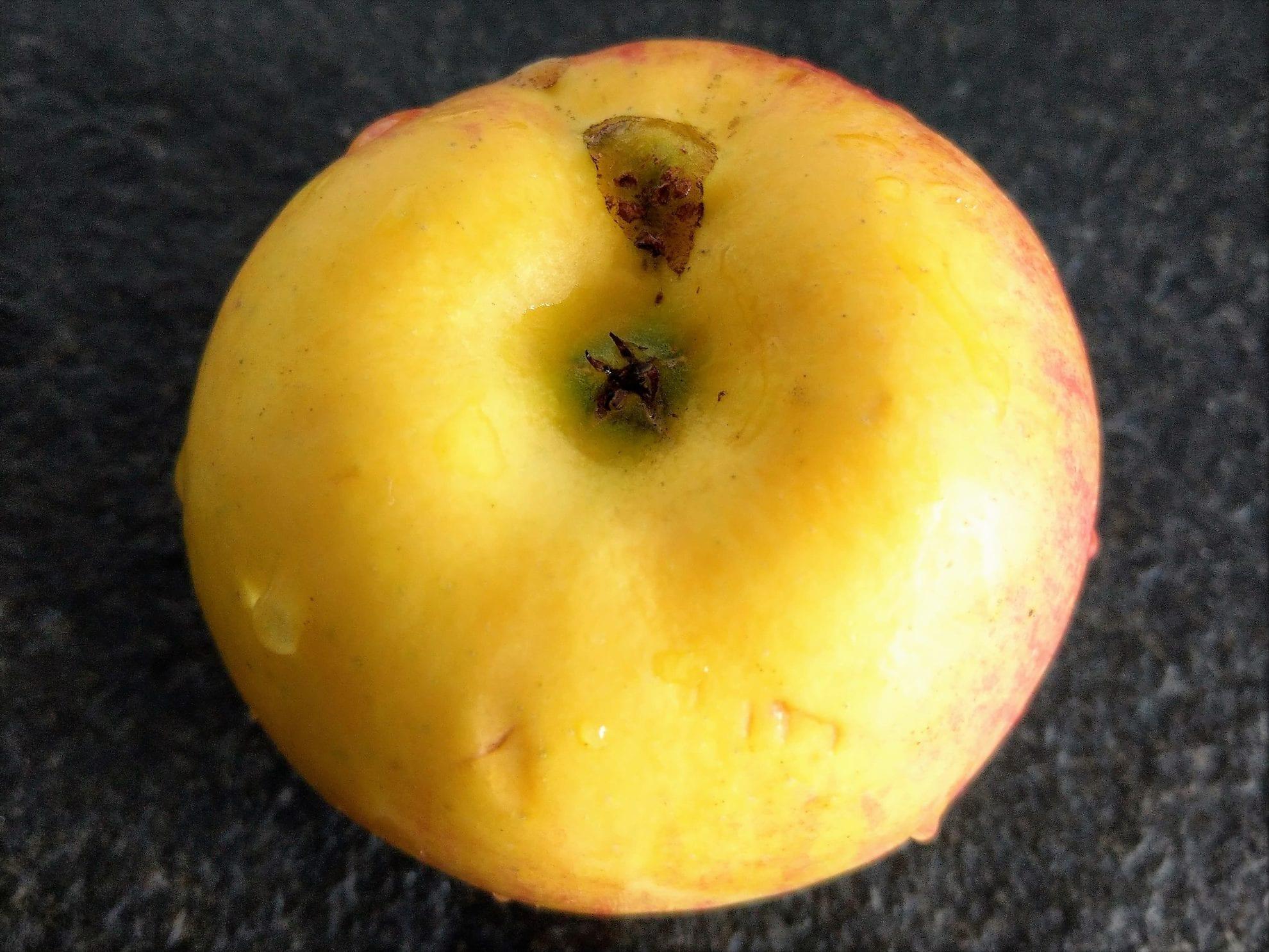 Apfelschnitten, Apfelkuchen, Rezept, Rezeptidee, Backen mit Kindern, Apfel, Zimt, Blätterteig