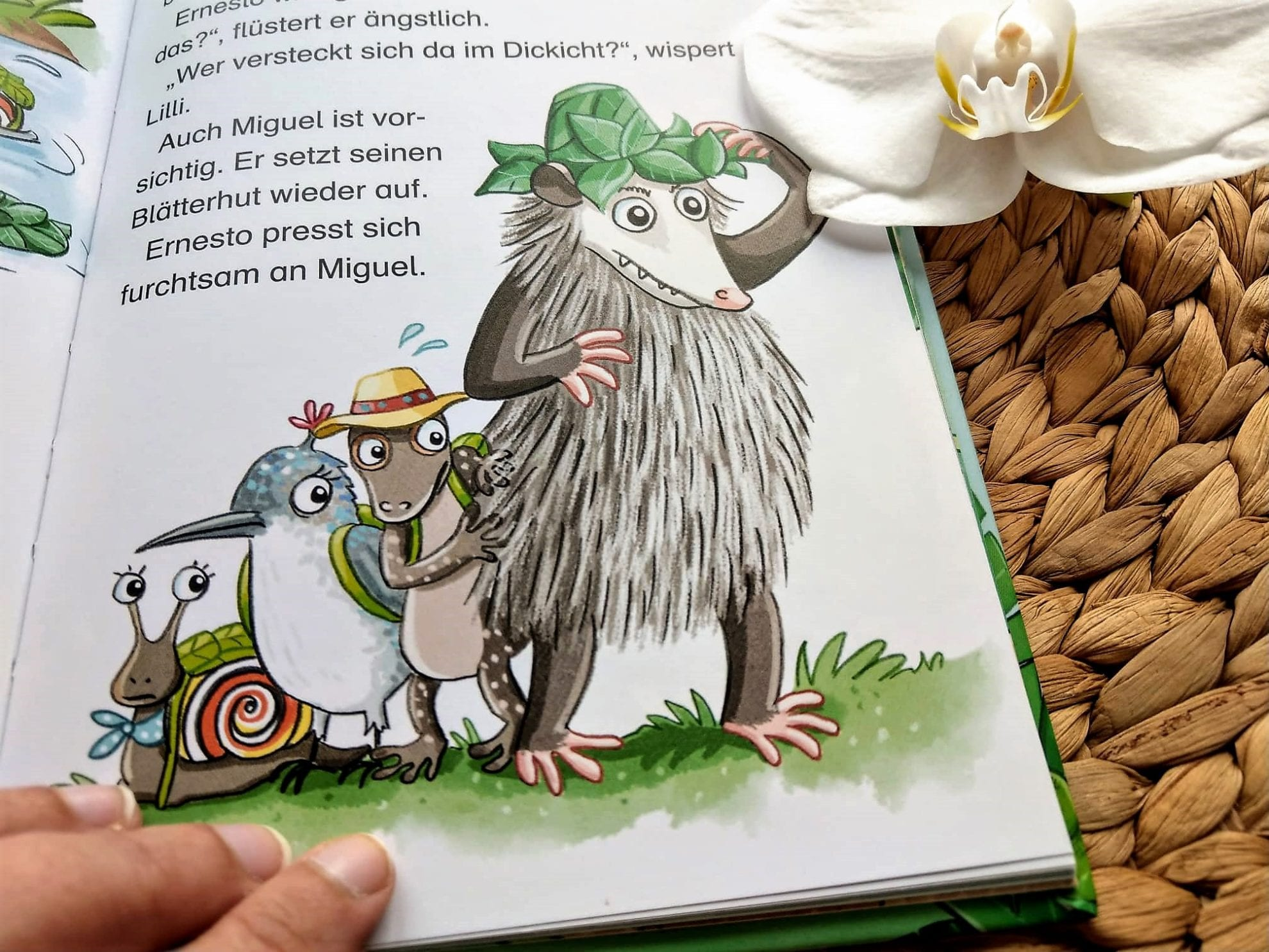 Lilli Kolibri: Blick ins Buch