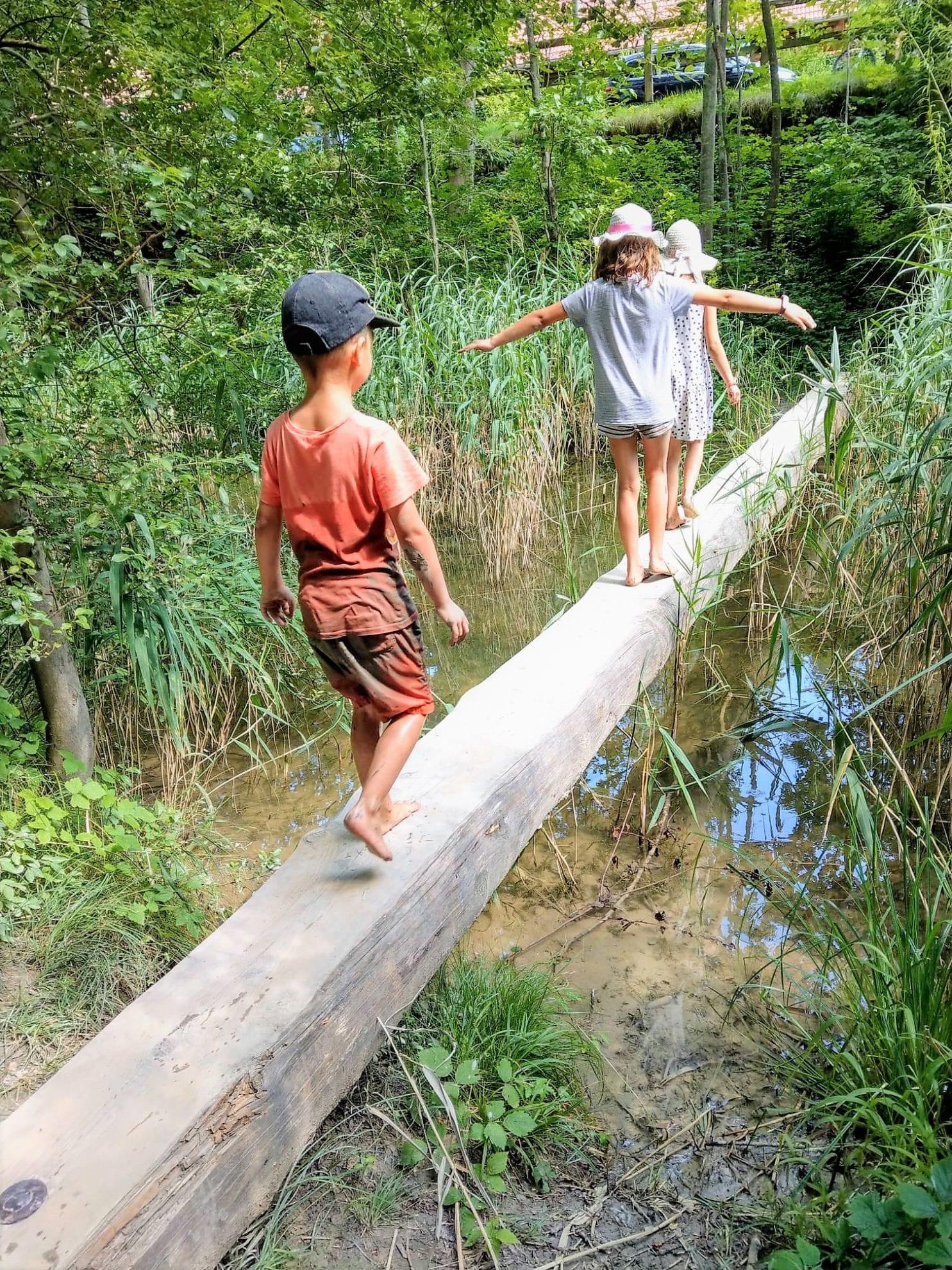 Kinder Wasser Baumstamm