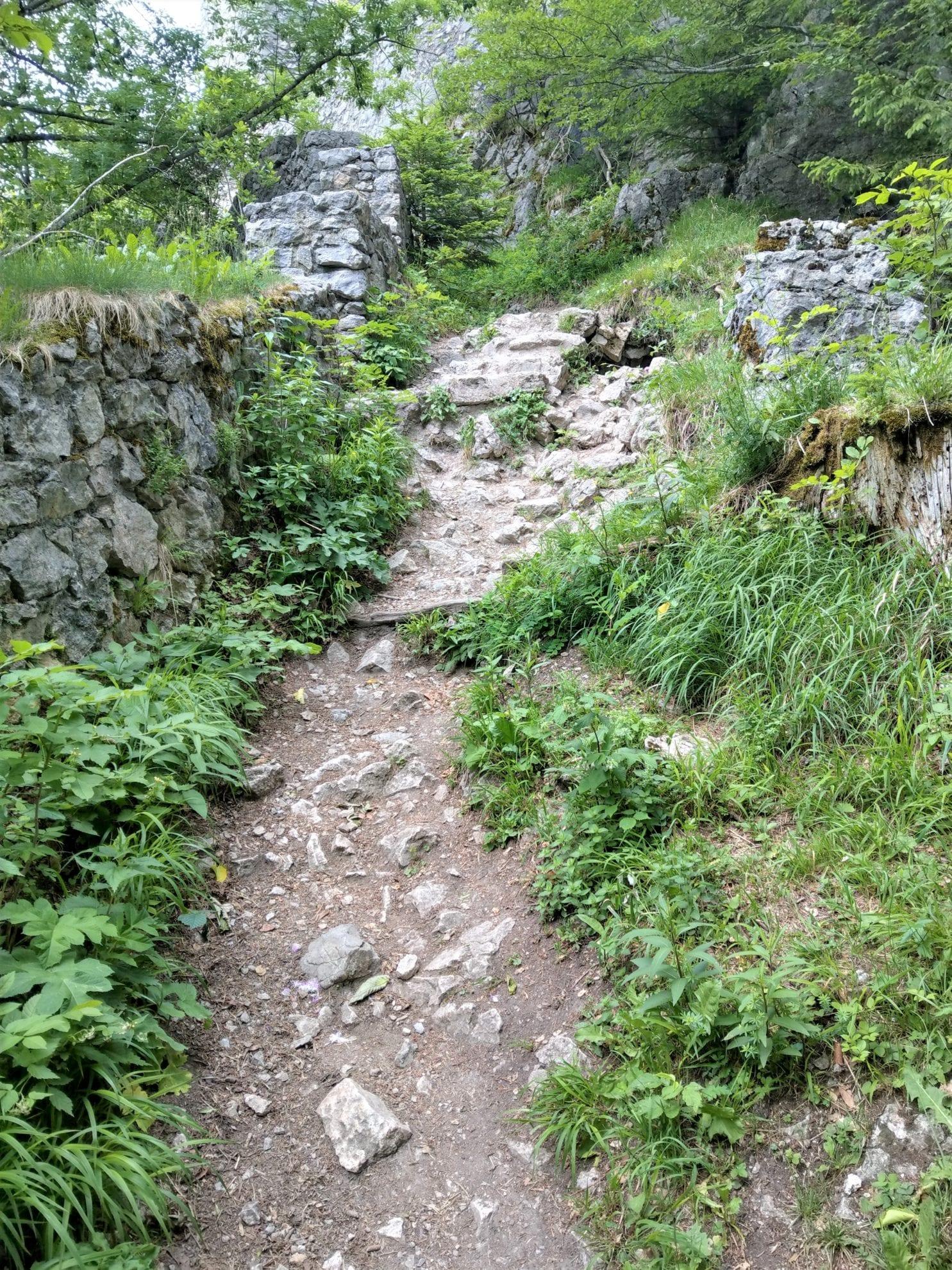 Aufstieg Burgruine Wartenfels
