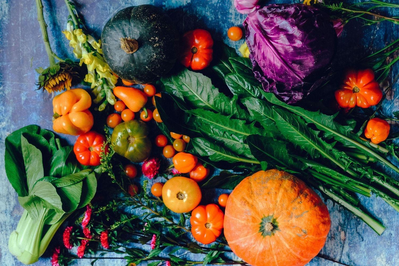 Speiseplan kochen Rezepte Speiseplan gesund ausgewogen Familienküche Kochen für Kinder