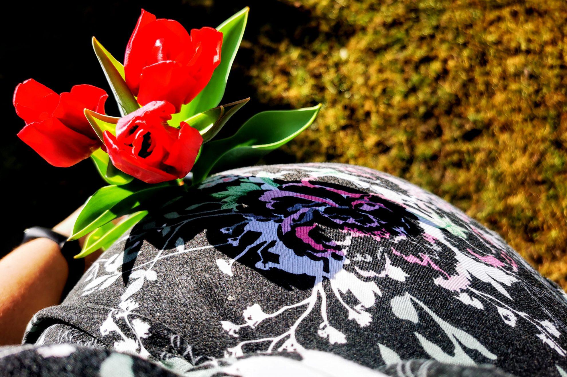 19 Wochen schwanger - die 20. Schwangerschaftswoche mit dem 6. Kind. Babybauch mit Tulpen in der Hand