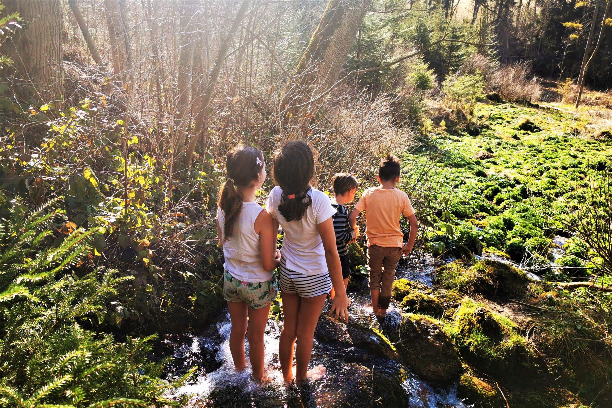 Du suchst nach tollen und kostenlosen Ausflugstipps im Unterallgäu? Dann bist du hier genau richtig. Hier findest du meine Top10 für Familien