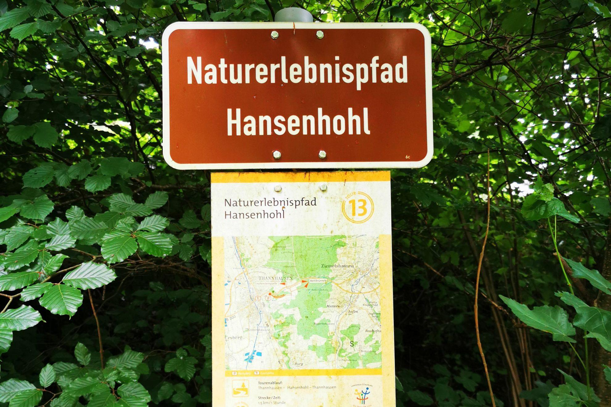 Ein toller kostenloser Ausflugstipp für die ganze Familie: Der Naturerlebnispfad Hansenhohl in Thannhausen bietet auf 1,5 km jede Menge Spaß!