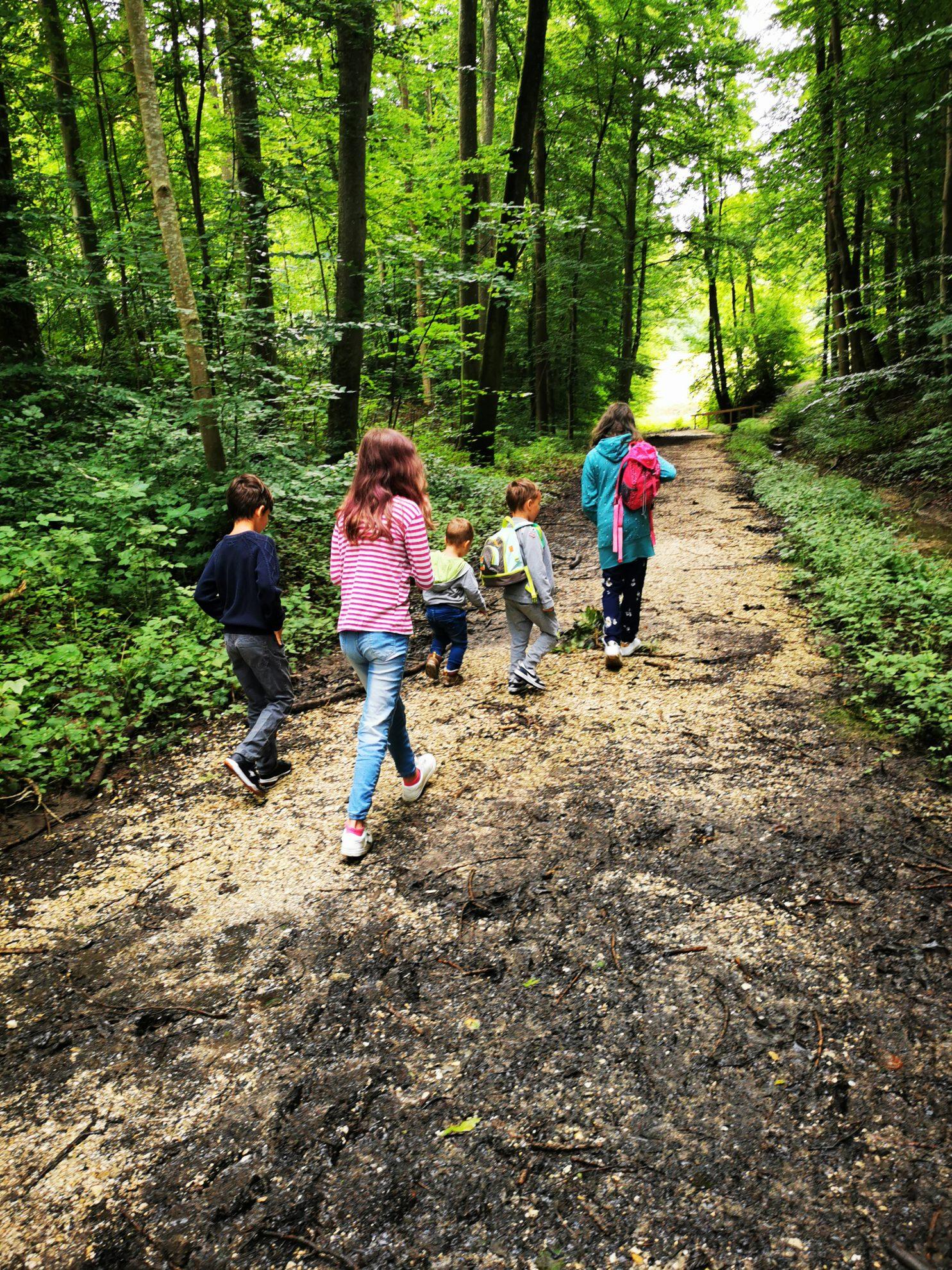Der Naturerlebnispfad Hansenloh mit Krimi-App ist ein absolut tolles Ausflugsziel für die ganze Familie