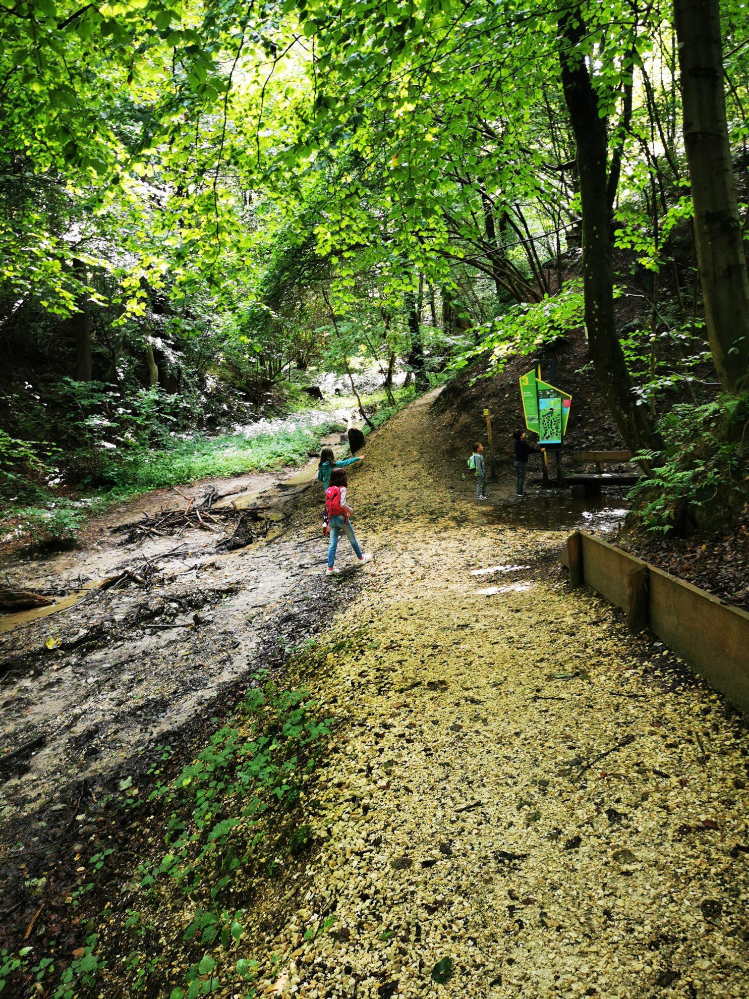 Überall gibt es spannende Dinge zu entdecken, wie hier das Flussbett und eine Station der Krimi-App.
